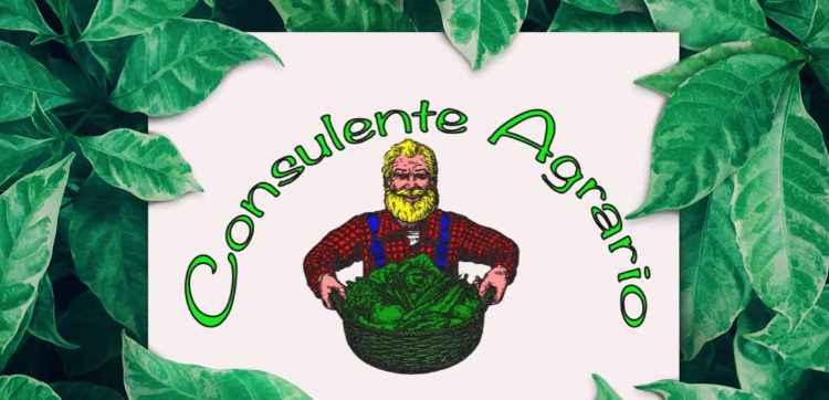 Consulente Agrario